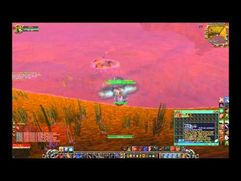 How to Track Fish in WoW(Gameplay Commentary)