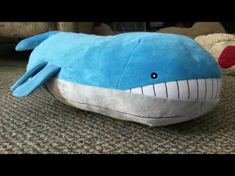 Wailord of a Tailord - Part 1