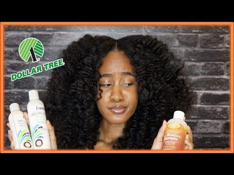 TRYING DOLLAR TREE HAIR PRODUCTS | I Cant Believe This Happened