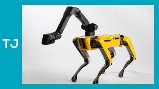 Boston Dynamics e os robôs do futuro