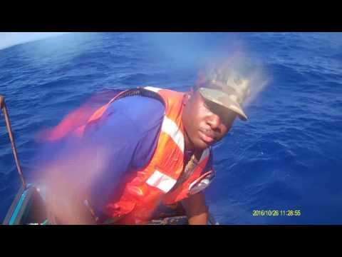 Dominica.WI Blue Marlin & Yellow Fin Tuna Fishing