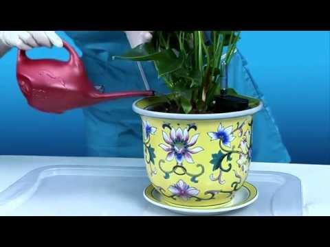 кашпо макраме для цветов своими руками схемы