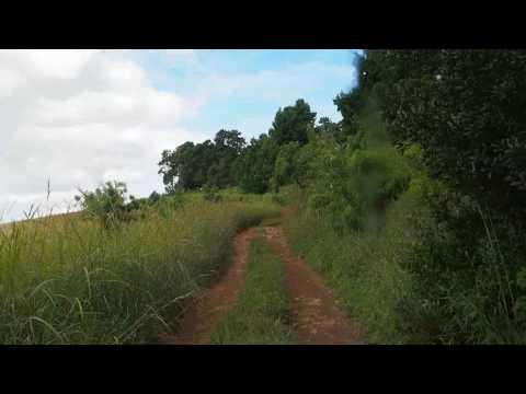 P3174907   Rijden op Zomba plateau
