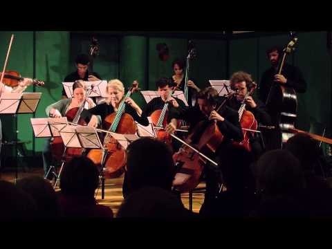 Strauss: Metamorphosen for 23 solo strings, live at the Stift Festival 2014.