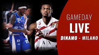 GAMEDAY LIVE | DINAMO - MILANO