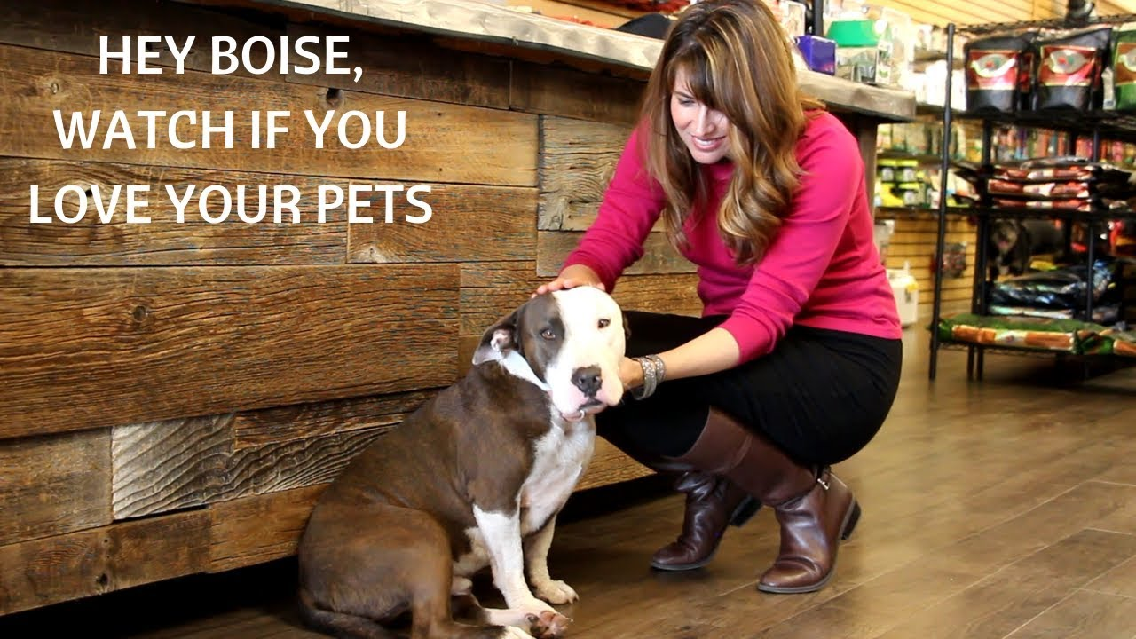 BOISE PET OWNERS Check out Bark n Purr