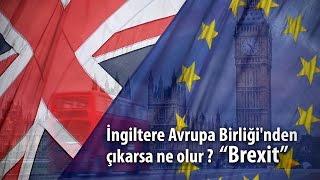 İngiltere Avrupa Birliği'nden çıkarsa ne olur? Brexit