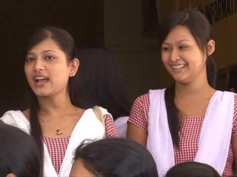 Pandu College
