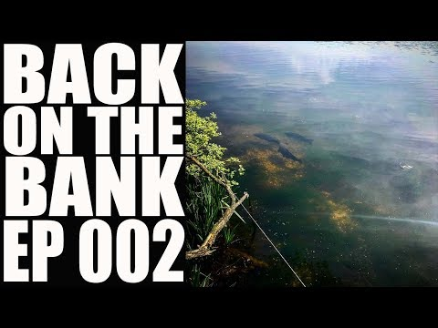 Carp Fishing: Cotswold Overnighters & 'The Forgotten Pond' - Ep 002