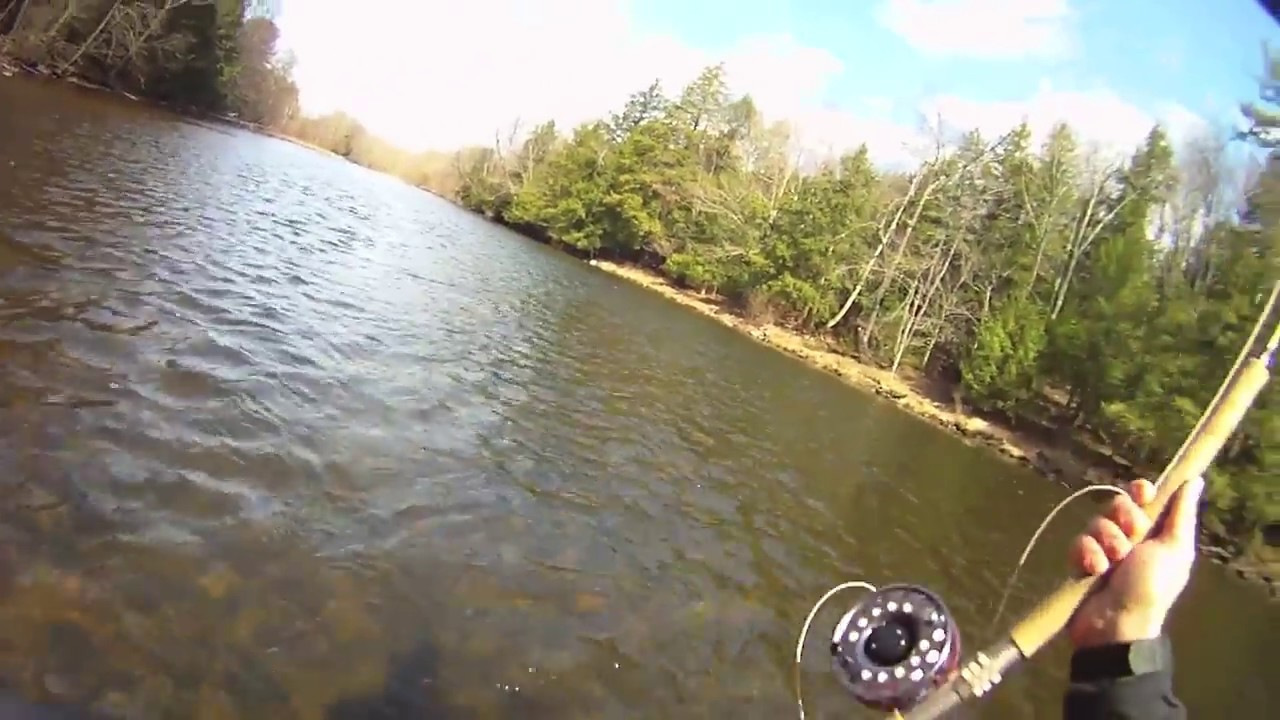 Steelhead fishing on new york 39 s salmon river with spey rod for York river fishing report