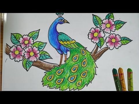 How To Draw A Peacock Step By Step Easy Peacock Drawing For Kids How To Draw A Peacock By Oil Pastel Youtube