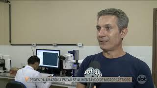 PESQUISA RIOS UFPA