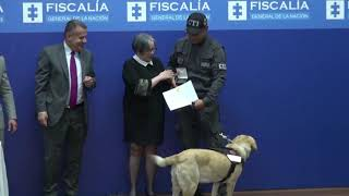 Watch: Colombia police retire trained dogs in emotional ceremony