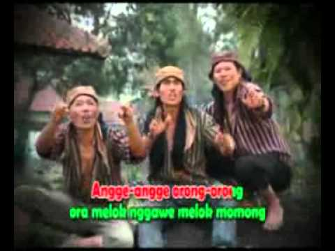 Angge2Orong2.mp4