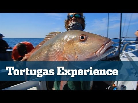 Yankee Capts // Dry Tortugas - Florida Sport Fishing TV