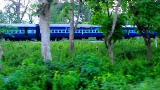Train   Jungle   Elephant Corridor   Buxa Forest   Alipurduar   Dooars