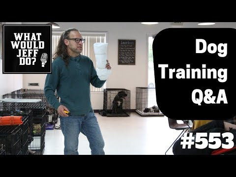 Dog Resource Guarding | Stop a Biting Dog | What Would Jeff Do? Dog Training Q & A #553