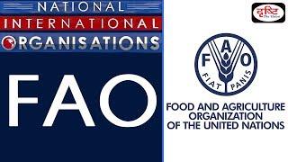 FAO - National/ International Organisation