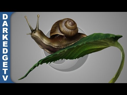 Playing with Sculptris #8 - Snail on a Leaf (realism test)