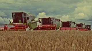 Deszczowy pokaz żniwny CLAAS 2016 I Agro-Land I maszyny w akcji