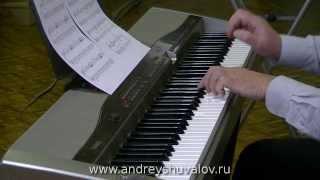 Андрей Шувалов - Цирковая лошадка