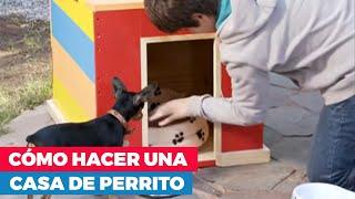 ¿Cómo hacer una casa de perro?
