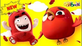 Чуддики | Джеф и Angry Bird | Смешные мультики для детей