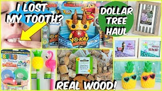 DOLLAR TREE HAUL MARCH 2019 MUST SEE NEW ITEMS