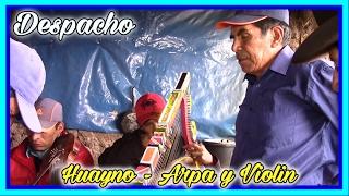 DESPACHO ARPA Y VIOLIN HUAYNO