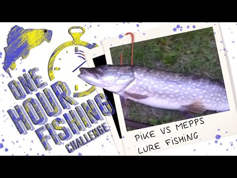 Kent Fishing Uk | River Pike Vs Mepps Lure Fishing, How To Catch In 1 Hour