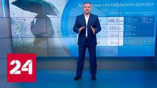 Погода 24  циклон принесет на запад России сильные дожди   Россия 24