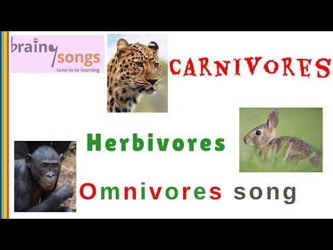 Carnivores Herbivores Omnivores Song | Science Music Video For Kids