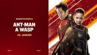 Ant-Man a Wasp (29.1.2021 na JOJke)