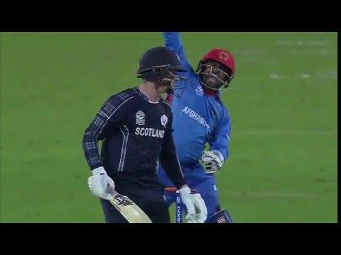 ICC #WT20 Scotland preview ahead of Zimbabwe clash