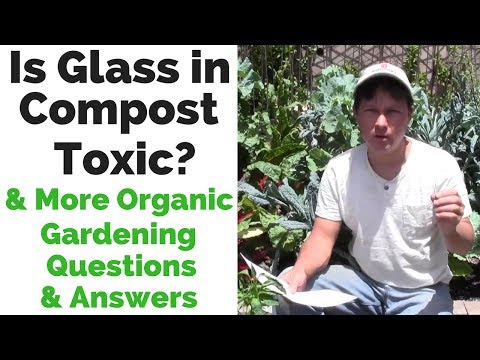 Is Glass in Compost Toxic ? & more Gardening Q&A