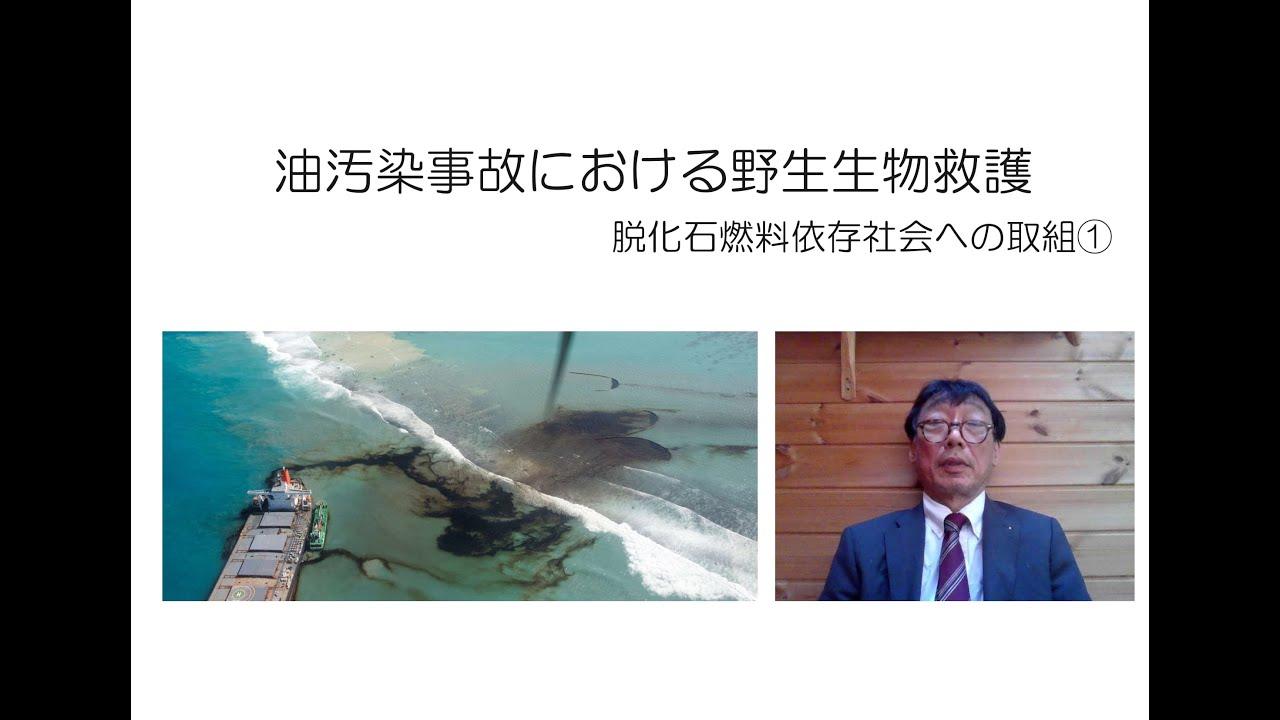 海洋油汚染事故時の生態系保全①