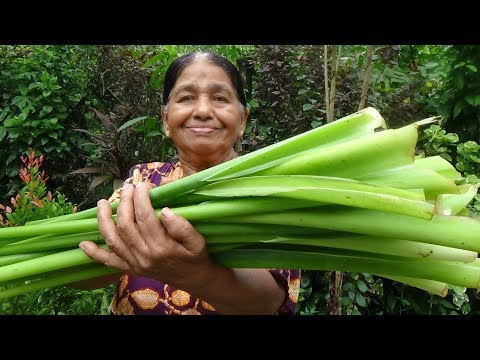 Healthy Village Foods ❤ Cooking Green Taro Stem in my Village by my Mom
