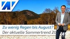 Schockierende Sommervorhersage 2020: Europäischer Wetterdienst rechnet mit einem Dürresommer!