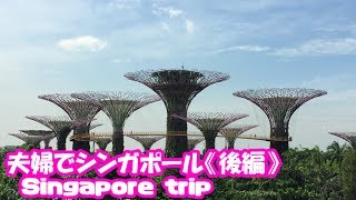 【シンガポール旅行・後編】シンガポール動物園・ナイトサファリ~ガーデンズバイザベイ~プラナカン
