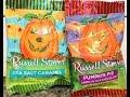 Russell Stover: Sea Salt Caramel & Pumpkin Pie Milk Chocolate Review