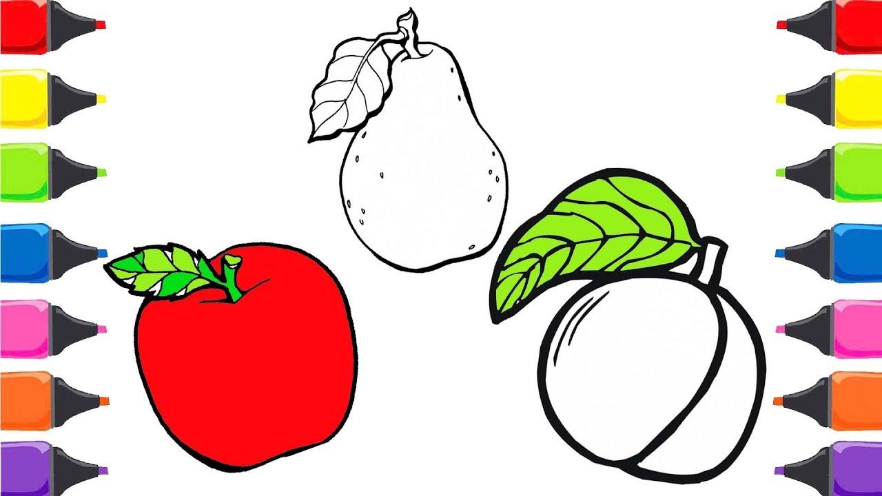 Elma Armut Kayısı Meyveleri öğreniyorum Meyveler Ve Renkler Boyama