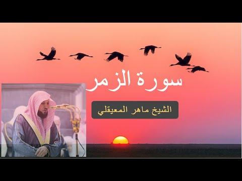 سورة الزمر  كاملة للشيخ ماهر المعيقلى