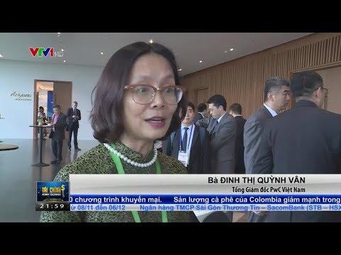 Dinh Thi Quynh Van at Vietnam Business Summit 2017 (VTV24)