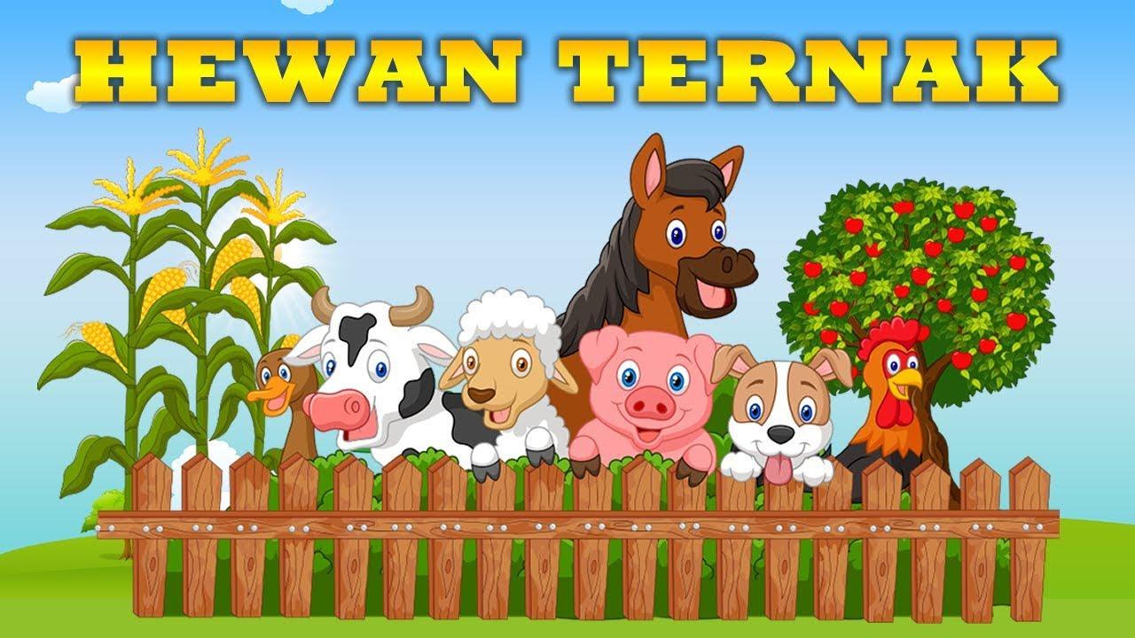Download Suara Hewan Ternak Nama Binatang Peliharaan Pendidikan Bayi Balita TK Anak-anak