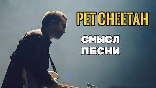 Pet Cheetah - ЗНАЧЕНИЕ СМЫСЛ ПЕСНИ (TWENTY ONE PILOTS) О чем поется в песне