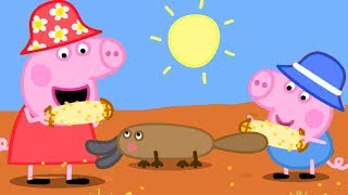 Peppa Pig English Episodes | Peppa Pig's Fun Time with Animals | Peppa Pig Official