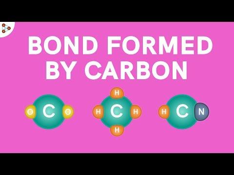 Bonds Formed By Carbon   Don't Memorise