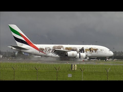 [4K] AWESOME heavy action | Plane Spotting at Sydney Kingsford Smith Airport (SYD/YSSY)