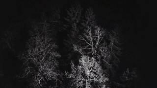 Baixar Zebra Katz - Blk & Wht (Official Music Video)