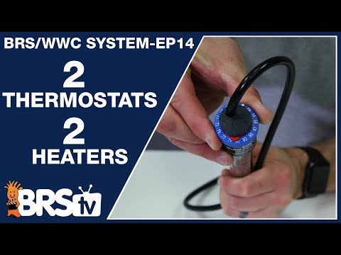 Ep14: Best Heater Strategy For Stable Reef Tank Temperature - The BRS/WWC System